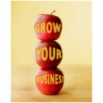 grow-a-business