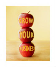 How To Grow A Business Online For Free